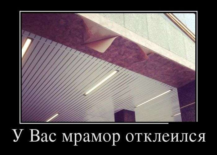 Демотиваторы №1499 (30 фото)