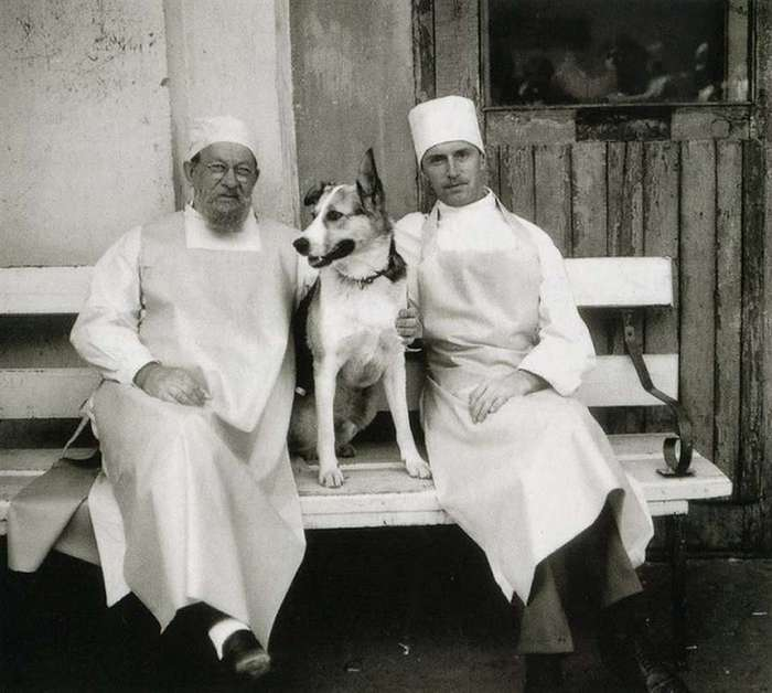 28 лет назад состоялась премьера фильма «Собачье сердце»