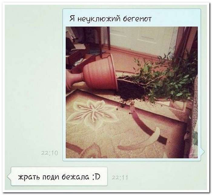 Сногсшибательные СМС-бомбы