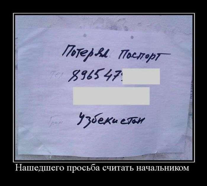 Демотиваторы №1429 (30 фото)