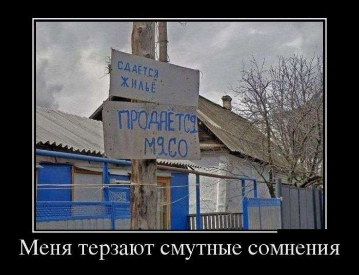 Демотиваторы №1430 (30 фото)