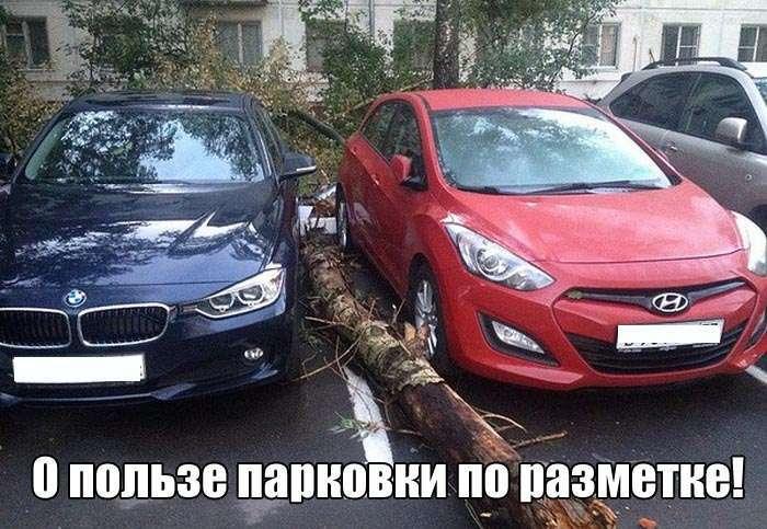 Подборка прикольных фото №1415 (107 фото)