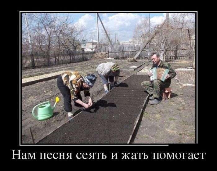 Демотиваторы №1325 (30 фото)