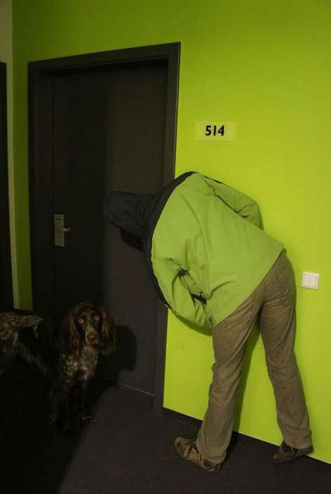 Хамелеоны наступают!: 17 людей, случайно познавших секреты маскировки