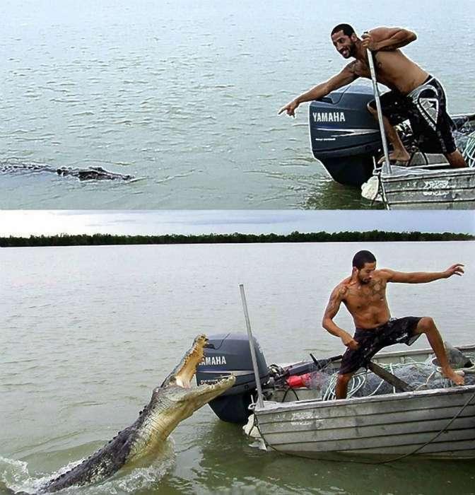 17 убойных фотографий о взаимоотношениях людей и животных