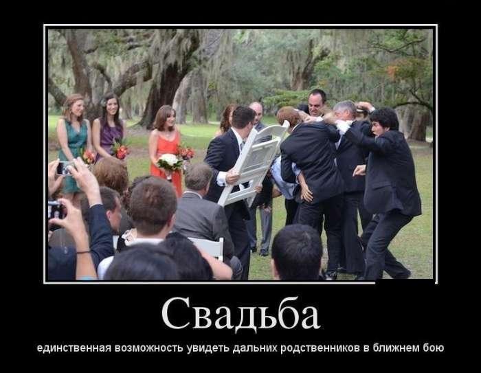 Демотиваторы №1346 (30 фото)