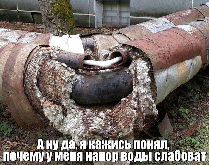 Подборка прикольных фото №1417 (115 фото)