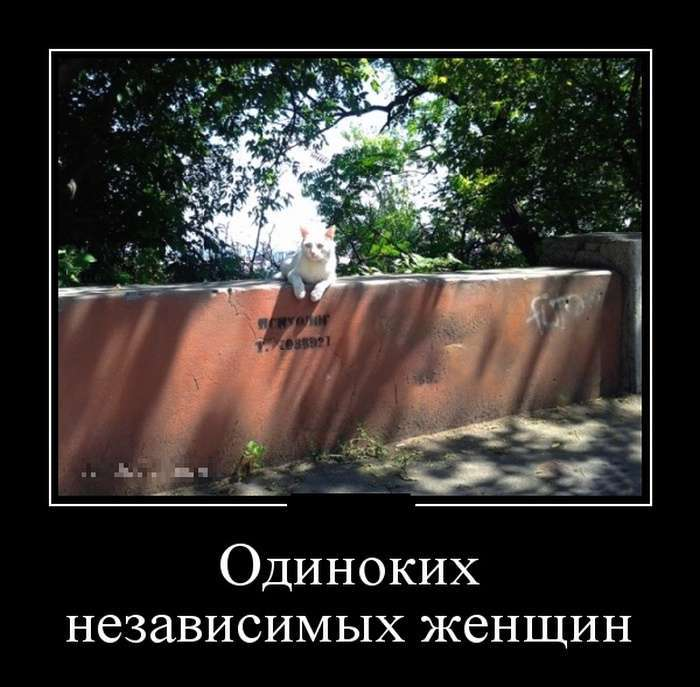 Демотиваторы №1347 (30 фото)