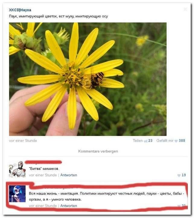 Утренний позитив: смешные комментарии