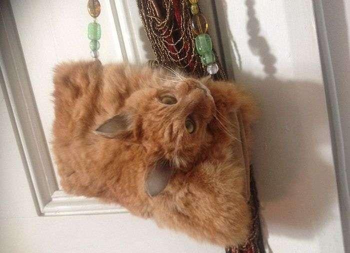 Сумка из кошки за 1400 долларов