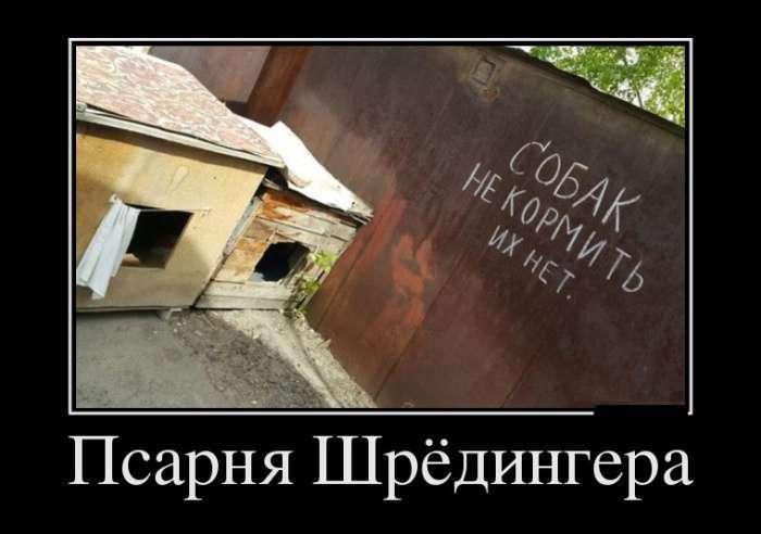 Демотиваторы №1348 (30 фото)