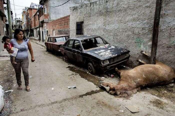 Жертвы 'кокаина для бедных' из Латинской Америки (17 фото)