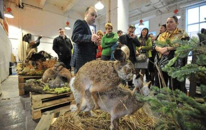 В Санкт-Петербурге открылась выставка «Интимные тайны животных» (22 фото)