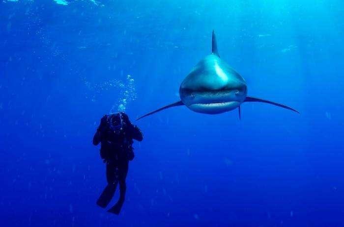 Фотографии легендарного подводника (19 фото)