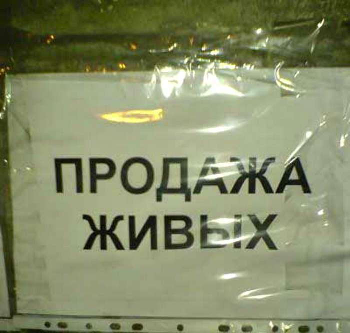 17 убийственных объявлений, которые можно увидеть только в России