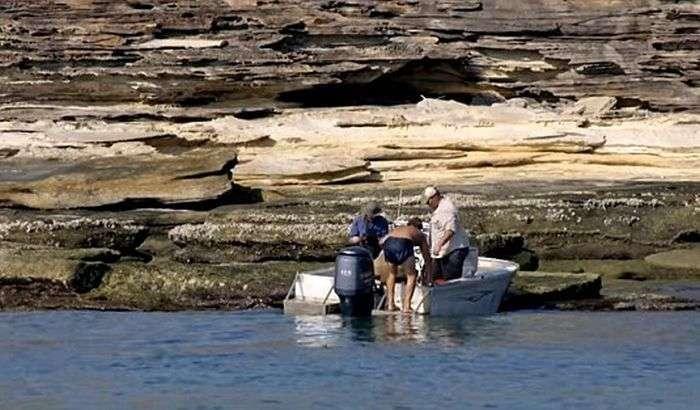 Съемочная группа Animal Planet спасла человека с необитаемого острова (5 фото)