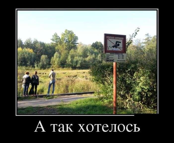 Демотиваторы №1392 (30 фото)