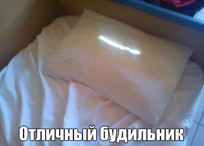 Подборка прикольных фото №1504 (117 фото)