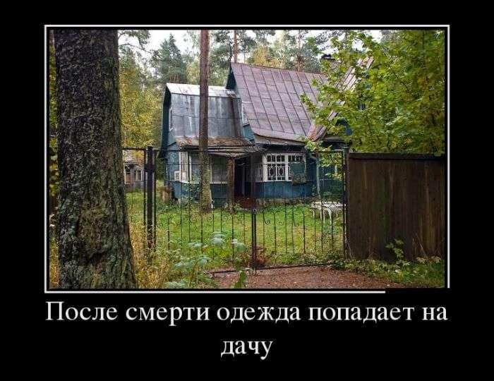 Демотиваторы №1503 (30 фото)