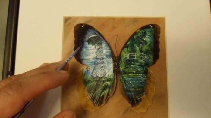 Удивительные картины на крыльях бабочек (14 фото)