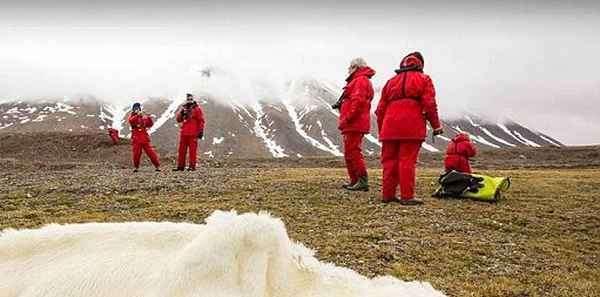 Доказательство глобального потепления (4 фото)
