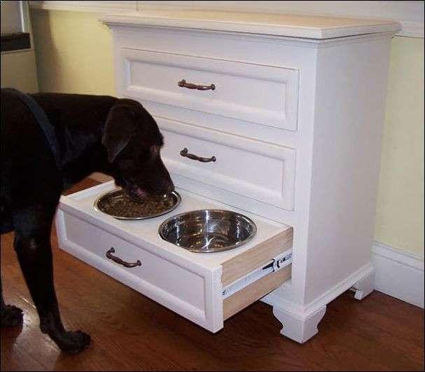 Прикольные штуки, придуманные владельцами собак (17 фото)