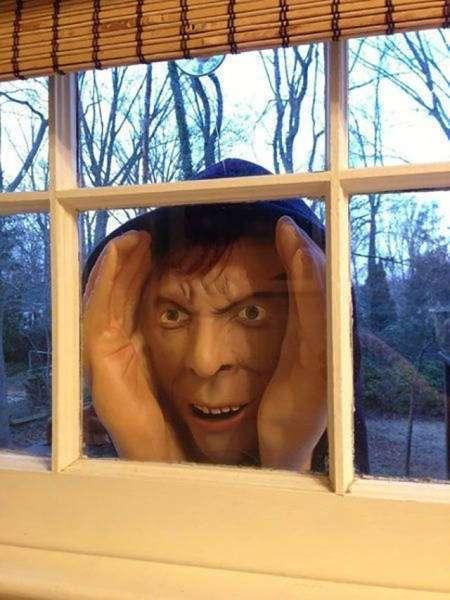 Шутки на Хэллоуин (10 фото)