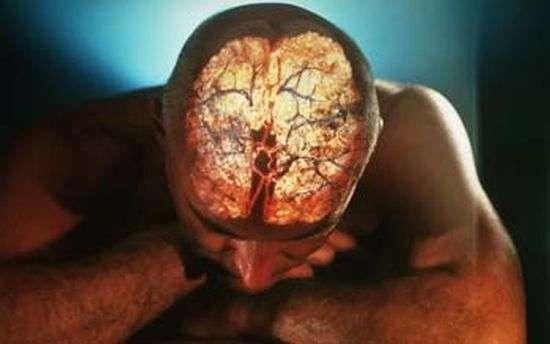 Способности человеческого мозга (14 фото)