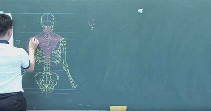Китайский учитель анатомии