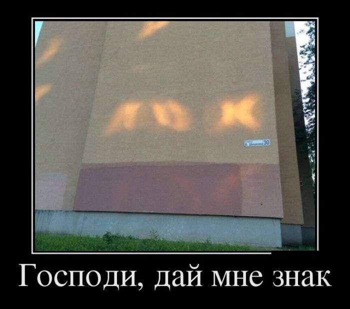 Демотиваторы №1439 (30 фото)