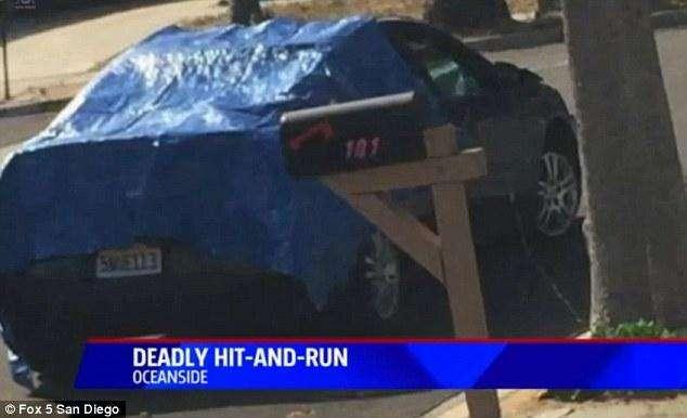 Американка сбила бомжа и поехала дальше с телом в лобовом стекле