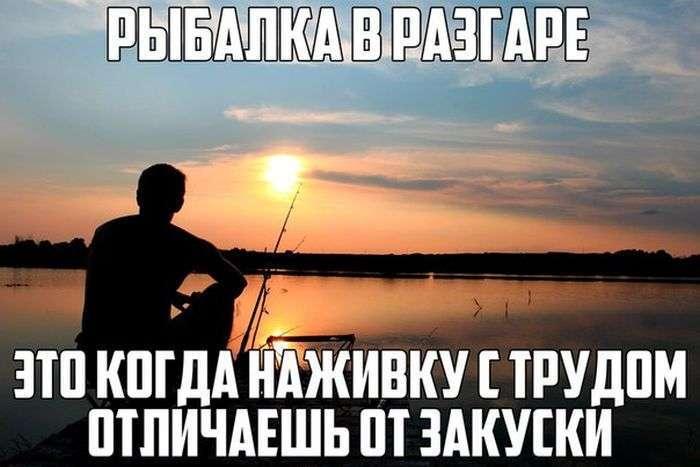 Подборка прикольных фото №1382 (106 фото)