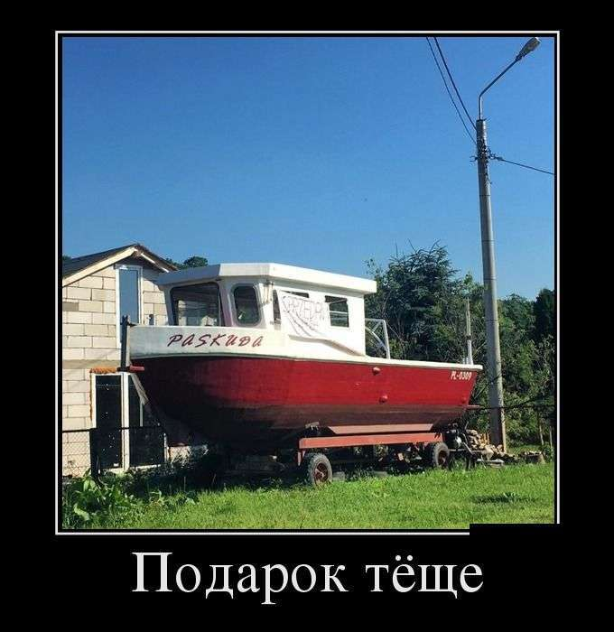 Демотиваторы №1419 (30 фото)