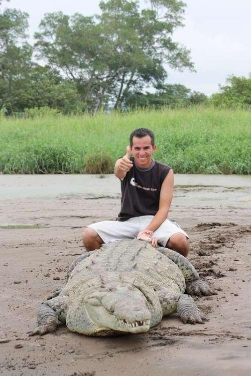 Заклинатель крокодилов из Коста-Рики (8 фото)