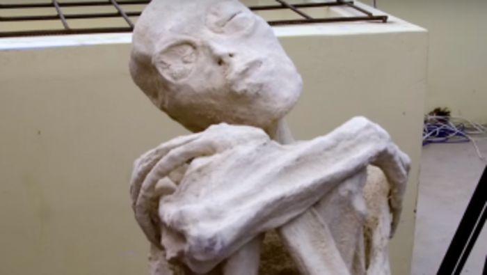 Была открыта мумия перуанского пришельца