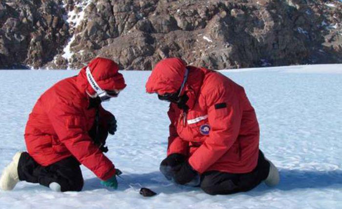 Шокирующие находки Антарктиды