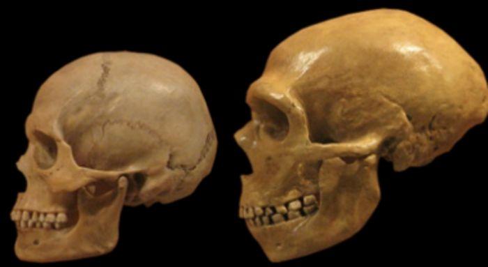 Неандертальцы жили не только в пещере
