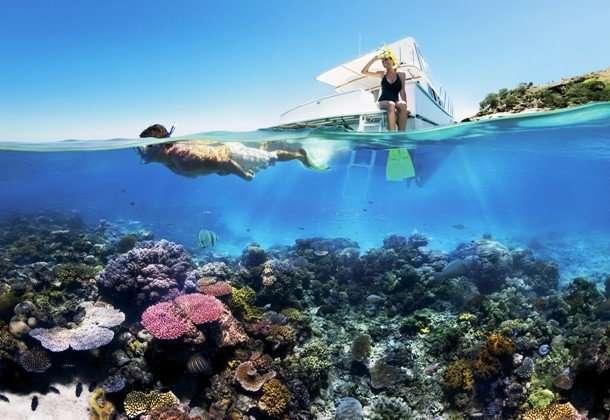 Интересные факты про Большой Барьерный риф, о которых вы захотите услышать
