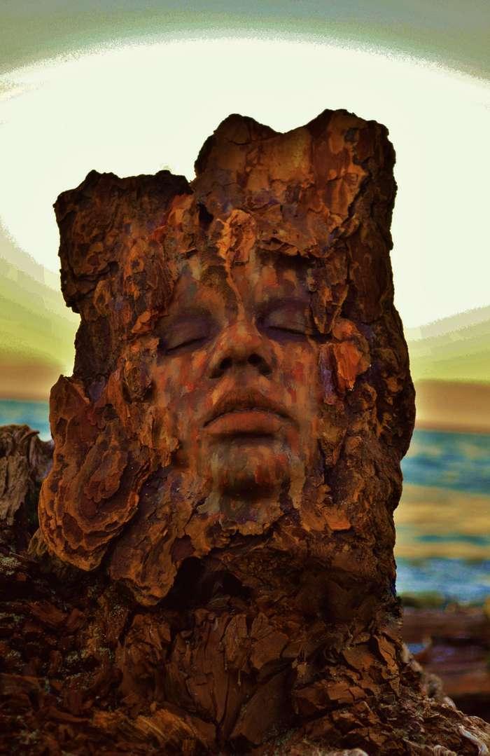 Деревянные души Дебры Бернье