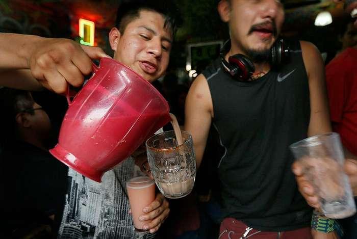 Пульке - напиток из сока агавы, который вытесняет из Мексики пиво