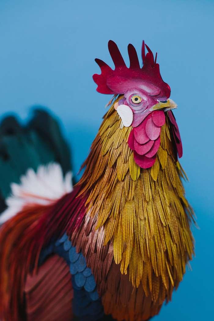 Новые бумажные птицы. Диана Белтран Херрера