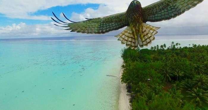 20 самых потрясающих фотографий, сделанных дронами в 2016 году
