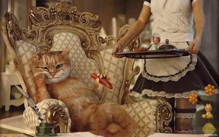 Самые богатые животные в мире