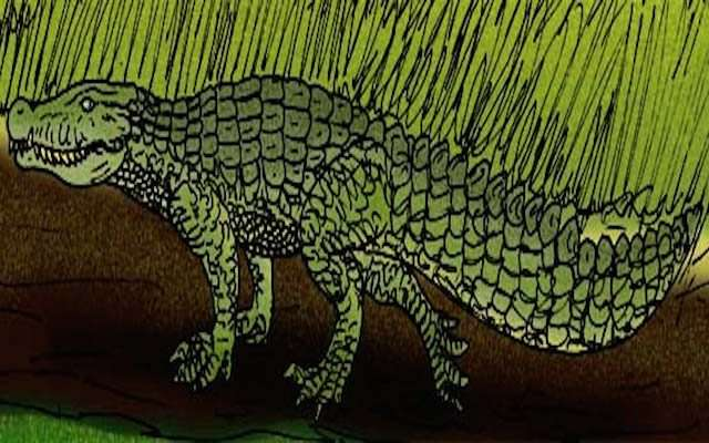 10 чудовищных животных, живших в одно время с человеком