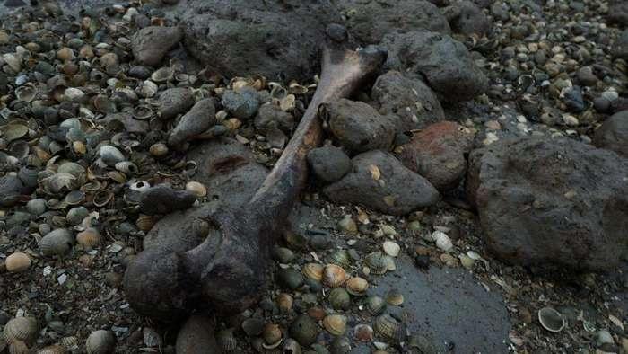 Остров мертвеца с человеческими останками в Великобритании