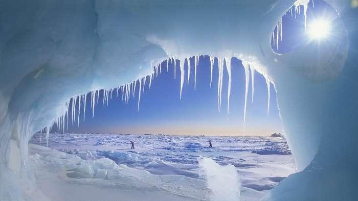 Все, чего вы до сих пор не знали о Северном полюсе!
