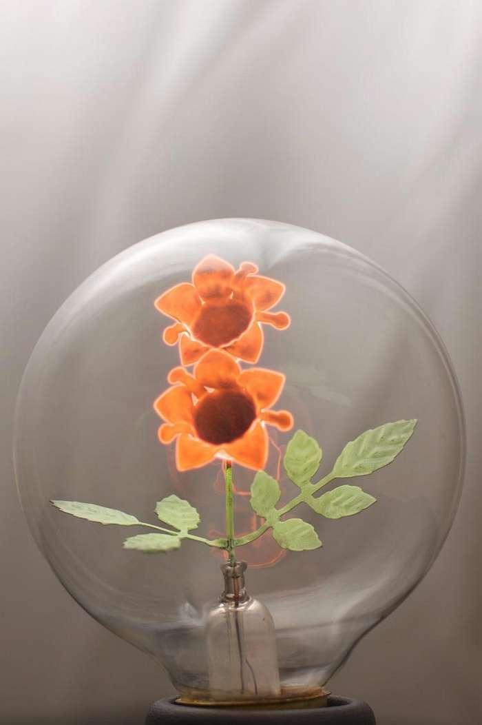 Восхитительные старинные лампочки со светящимися цветами, вместо обычных спиралей