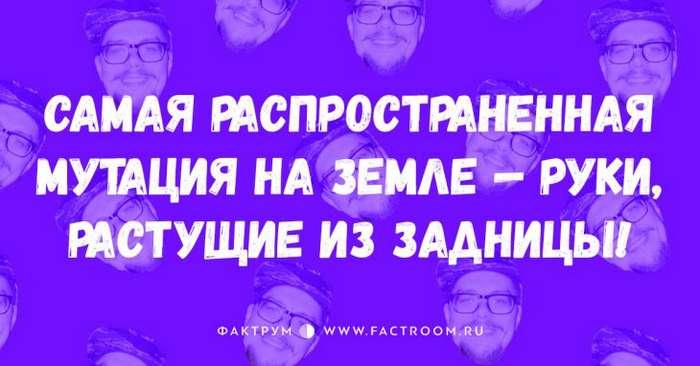 20 ВЕЛИКОЛЕПНЫХ АНЕКДОТОВ