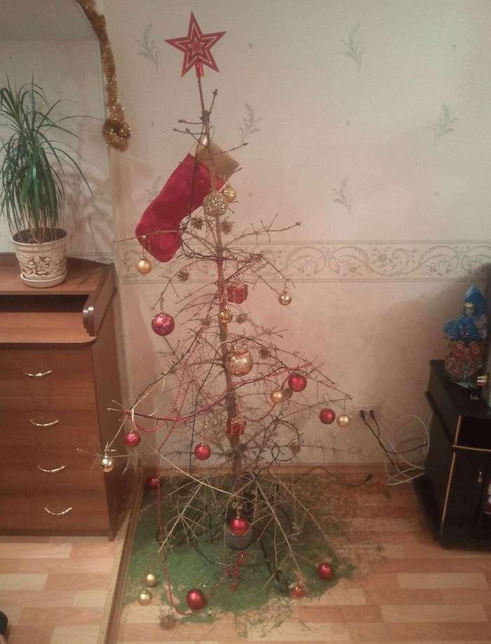 Как в России запрещали Новогодние елки