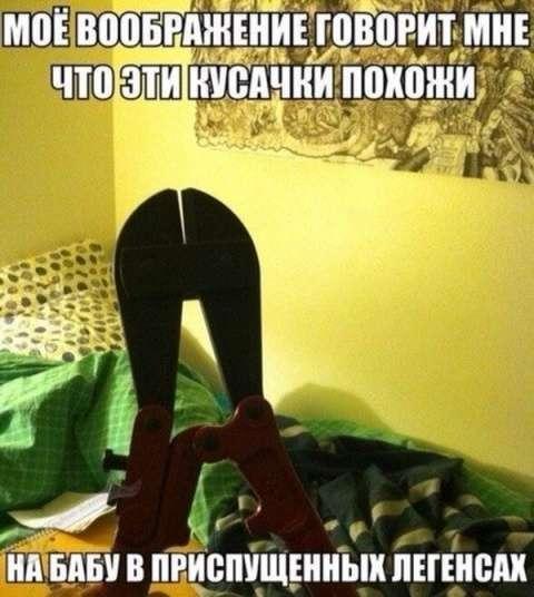 Демычи от Ржевского